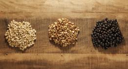 Explorando Los Cafés Naturales, Honey y Despulpados Naturales
