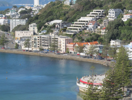 A Specialty Coffee Shop Tour of Wellington, New Zealand