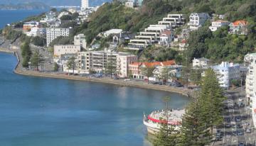 Un Recorrido Por Las Tiendas de Café de Wellington, Nueva Zelanda