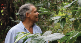 How Climate Change Impacts Your Coffee Plants