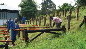 Renewing Generational Interest in Kenyan Coffee Production